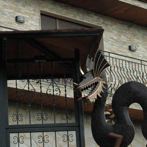 Dragon 036